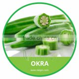 HIGH QUALITY FRESH OKRA