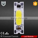 Newest sign high brightness long lifespan waterproof DC 12V cob power led module with white red blue yellow green warm white RGB