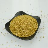 Wholesale Organic Bulk Yellow Millet In Husk For Sale