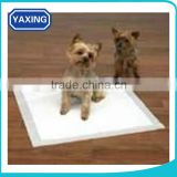 Pet suction pad, a large number of new Puppy training pad dog training pads,Pet training activities
