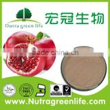 pomegranate bark extract powder free sample