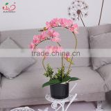 factory direct cheap real touch indoor potted pink butterfly orchid flower artificial plants