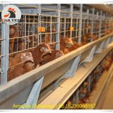 Tanzania Poultry Farming - Battery Chicken Cage & Layer Cage & Chicken Coop & Poultry Cage & Laying Hen Cage in Chicken House