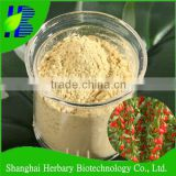 100% Pure nature plant extract Goji Berry extract