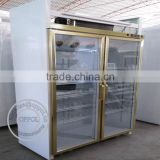 OP-A109 Customize Temperature Luxurious Pharmacy Display Refrigerator                                                                         Quality Choice