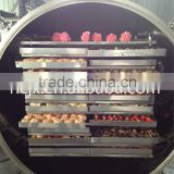 vacuum freeze dryer for food