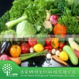 Natual Vegetable Powder/dehydrated vegetable powder