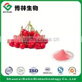 Bolin Supply Natural Organic Acerola Cherry Fruit Powder Cherry Fruit Flavor Powder