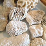 Eco-Friendly Aquarium Filter Medium Bio Coral Sand For Pond