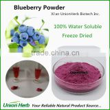 Instant Blueberry Powder Water Soluble Freeze Dried