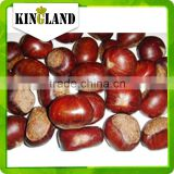 Stir-Fried Processing Type ,SnackBag,Bottle,Box,Bulk,Vacuum Pack Packaging Water bulk2015 new crop chinese fresh Chestnut