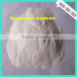 Agriculture Grade best price manganese sulfate fertilizer