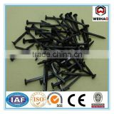 Blue Shoe Tack Nails From Manufacture