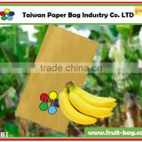 TPBI brown color paper banana growing protection cover bag