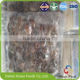 New arrival delicious frozen cooked baby clams