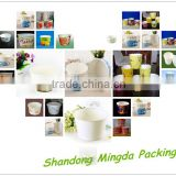 Chinese factory direct sales disposable paper cup for ice cream                                                                                                         Supplier's Choice