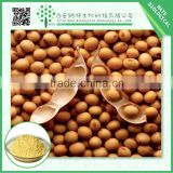 TOP gradeSoybean Extract powder Soybean Phosphotidyl Serine 20% -50% free sample