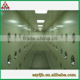 Professional factory SYF air shower clean room