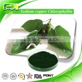 Natural Green Pigment Sodium Copper Chlorophyllin