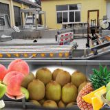 Fruit Vegetable Washing Machine Industrial Air Bubble ,fruit vegetable processing machinery spllier