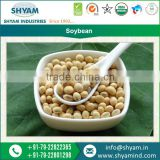 High Protein Soybean Seller From India