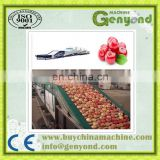 Fruit & Vegetable Washing Drying Waxing Sorting Line Machine Fruits Processing with factory price