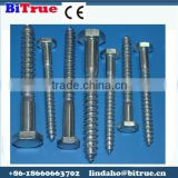 Stainless Steel Allen Head Self Tapping Screws