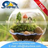 Multifunctional large glass fish bowl with low price