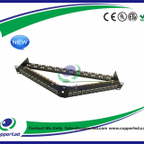 FTP Cat.6A Patch panel angled 24 Port