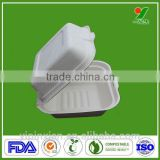 USA FDA BPI Approved biodegradable & compostable material bio eco lunch pizza packaging box