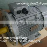 Y series 3 phase electric motor