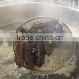 dried Sea cucumber/ dried Salted sea cucumeber