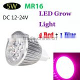 Energy Saving 4 Red 1 Blue LED Plant Grow Light MR16 5W Hydroponic Lamp Bulb for Indoor Flower Plants DC 12-24V Grow Lights