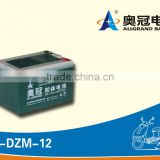 electric bike battery 12v12ah/scooter battery/fork lift battery