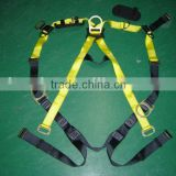 Lanyard with safety harness