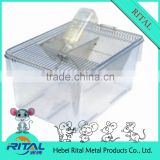 High quality mouse rat group breeding cage, SPF Laboratory mouse feed Cage for rat feeding