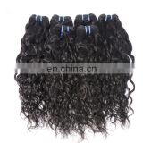 Wholesale Free Sample Hair Bundles Brazilian Water Wave Hair Extensions