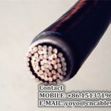 0.6/1 kV Single Core Power Cable (YJV)