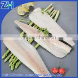 Frozen hake fish fillet HGT in market