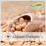 Natural plant good quality lower price chickpea