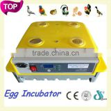 DFPets DFI003 Durable egg incubation and hatchery machine