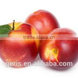 China Fresh peach