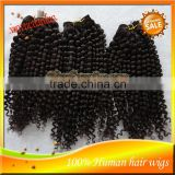 Wholesale Unprocessed 100% Indian Virgin Water Wave Human Hair Wig,Hair Extension Made In China
