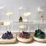 Flower glass dome with base as glass decoration