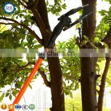 China professional electric jujube gathering machine jujube picker walnut picking machine hazelnut harvester