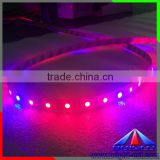 2016 colorful led strip 5050 grow plant light ,ip66 new style hot sell long life time led plant grow light strip