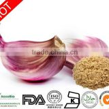 High Quality Pure Natural Allicin Powder, Garlic Extract, Odorless