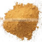 Wholesale Pure Brown SeaWeed Extract Powder Fucoidan