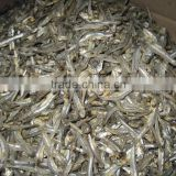 DRIED ANCHOVY FISH SELLER (Email: katherine.vilaconic@gmail.com, Viber, Whatsapp: +841687264621)