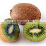 Organic fresh Factory Supply High Nutritious Actinidia Chinensis